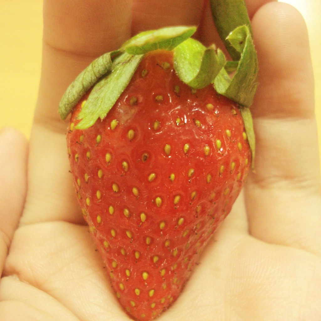 Strawberry Shortcake Yawn