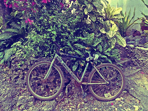 Rock Garden Resort bicycle