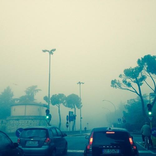 Persi nella nebbia di novembre #novembre #fall #autumn #autunno #giriingiro #forli #igersfc