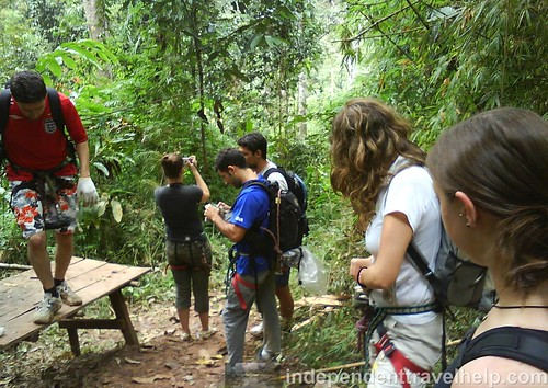 Organised trips, independent travel, jungle, laos, ziplining