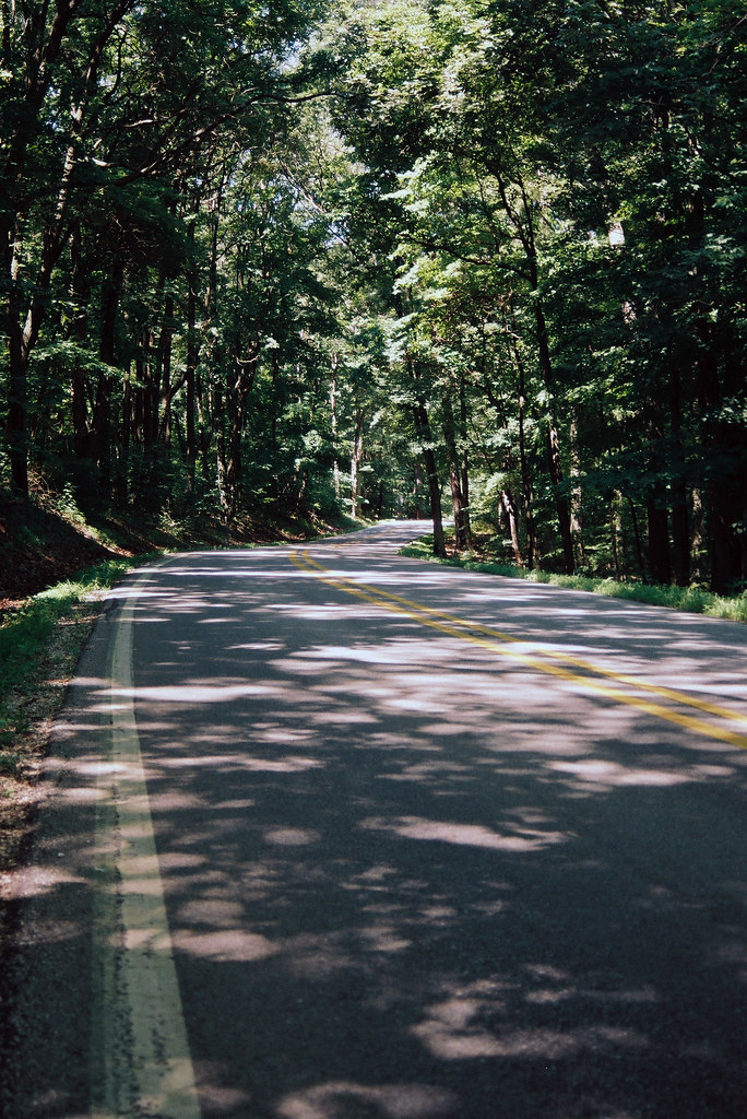 Curvy State Road 45