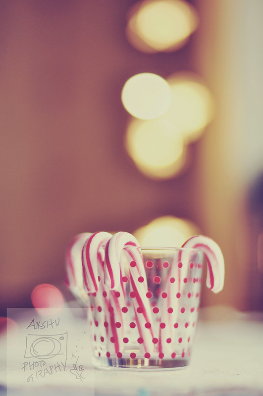 Day 353.365 –  Candy Cane