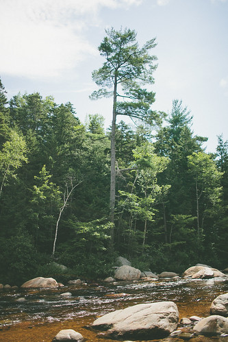 Maine2013-115 by AshleighFournier