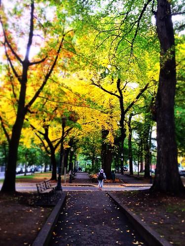 Shemanski Park, Portland by nobleviola