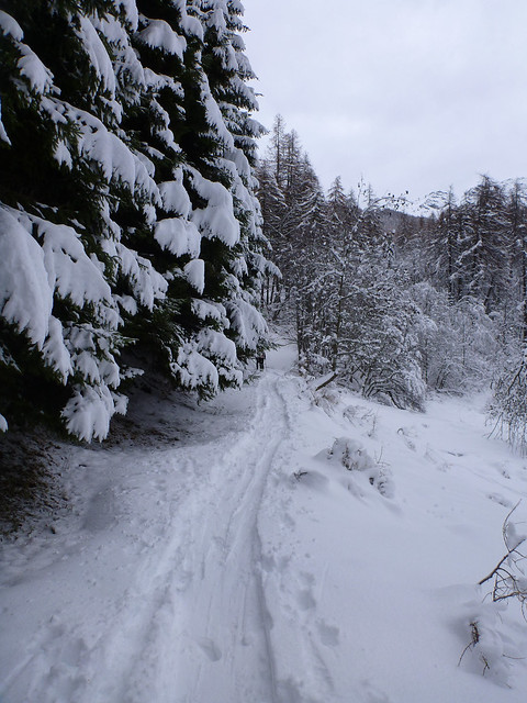 Una strada bianca