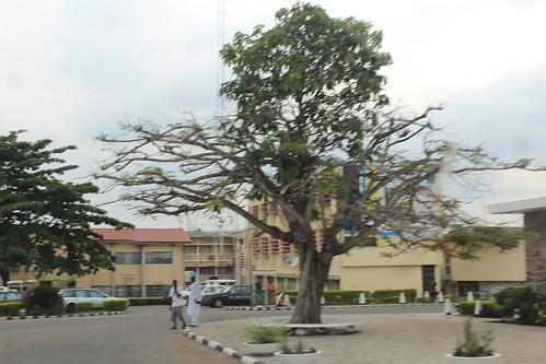 University of Ibadan by Jujufilms