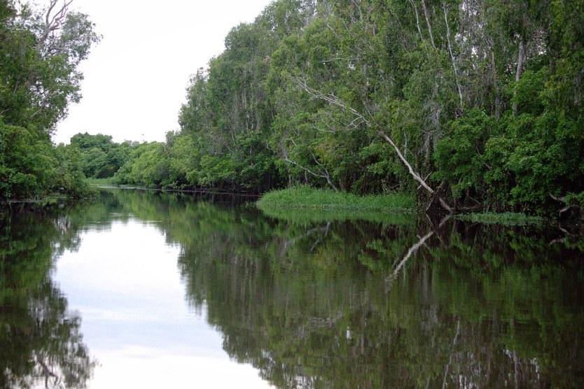 South Alligator River.