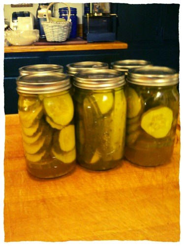 Pickling and brewing beer this weekend