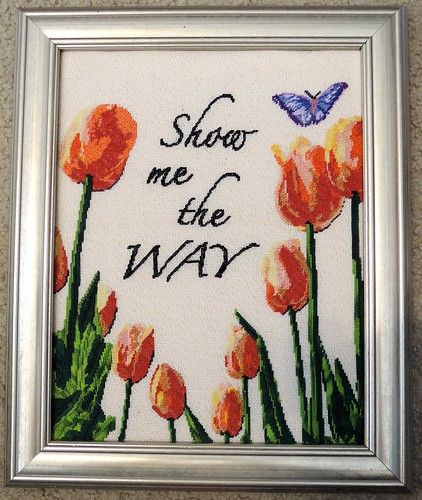 Tulips - Temporary Frame by Carmen CS