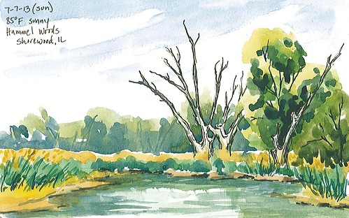 20130707_hammel_woods_sketch