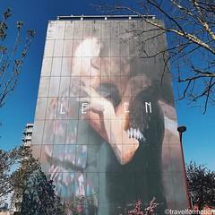 #thecrystalship #streetart #streetartistry #art #ostend #oostende #visitoostende #wanderlust #travel #travelgram #guardiancities #guardiantravelsnaps #vsco #vscocam #belgium #visitflanders #igbelgium #wall #blue #spring #sky #trees #streetart_daily
