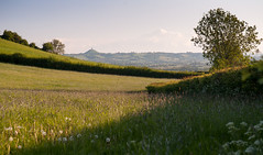 Approaching Glastonbury