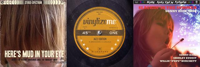 Vinylize Me