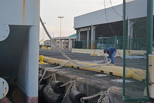 Paul securing barge