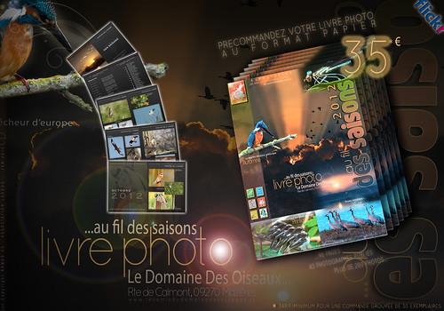 affiche-pub-Livrephoto-ddo-2012-precommande-1a