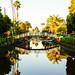 LA trip Chrismas 2013-1-44