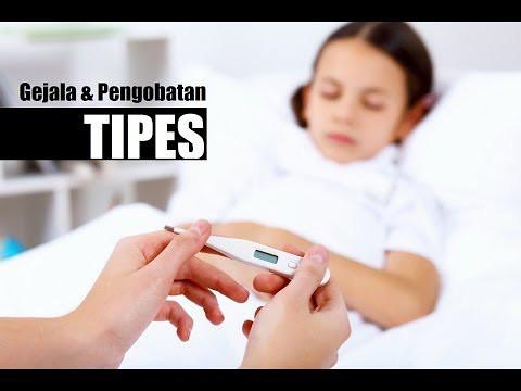 Bahaya Penyakit Tipes Akut