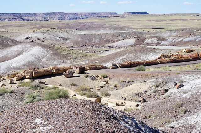 Petrified Forest National Park, Arizona, October 9, 2011