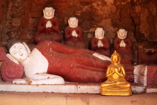 Buddha and Pals