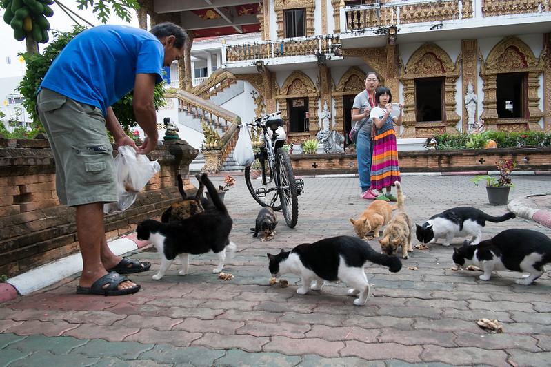 Wat Buparam, Chiang Mai