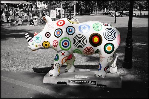 Go Rhinos: Not a Target by Davidap2009