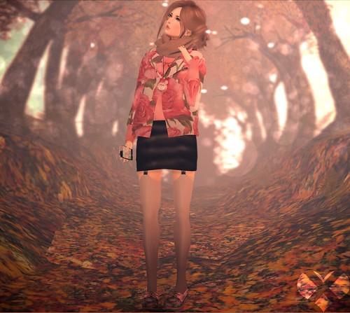 Autumn strolling