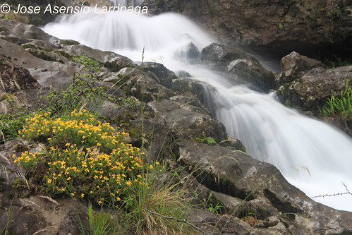 Cascada . Efecto seda #DePaseoConLarri #Photography  6
