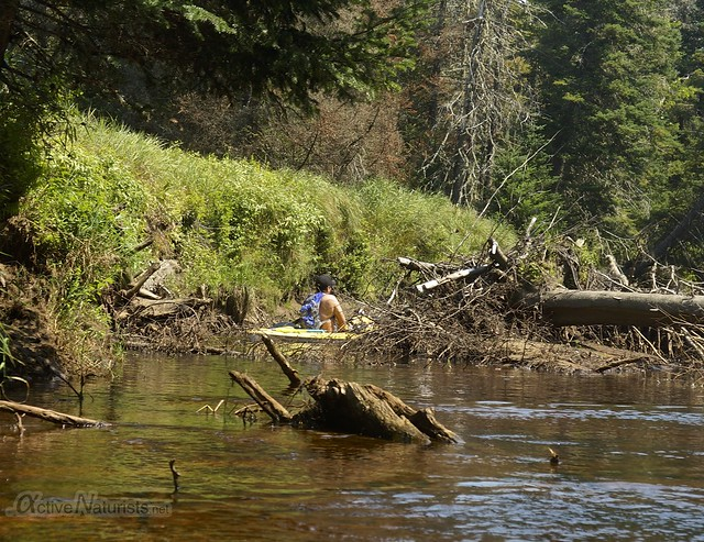 kayaking 0001 Sacandaga River, Adirondack, NY, USA