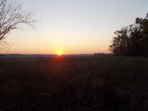 Sunrise Dyke Marsh 10/29/13 by Rootchopper