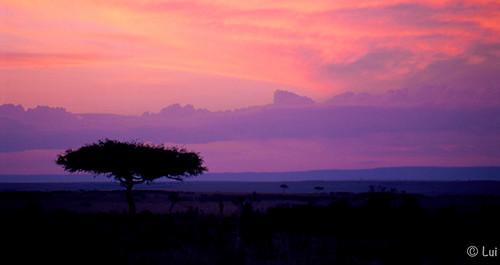 Atardecer en Kenia by Luisa...