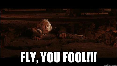 Gandalf: FLY YOU FOOLS