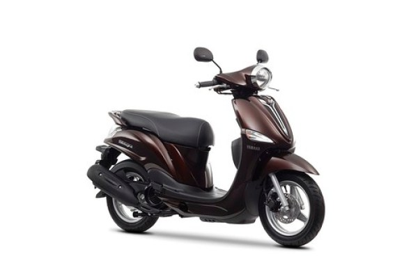 Yamaha D'elight 2014 Magnetic Bronze estudio 01
