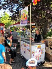 Salt Spring Island Market Fruitsicles
