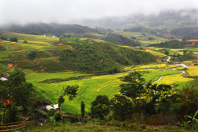 Sapa - Treking to Matra Black H'mong village