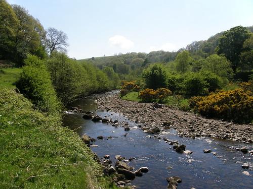 River Roeburn II