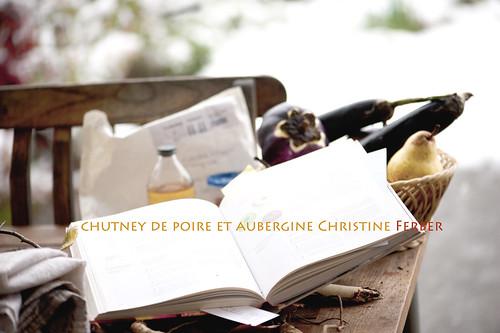 Verso il Chutney Poires et Aubergines
