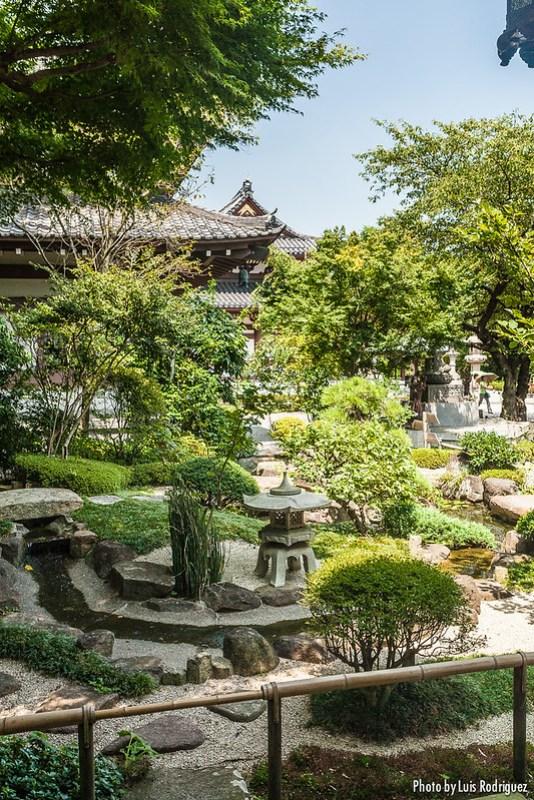 Templo Hasedera en Kamakura-24