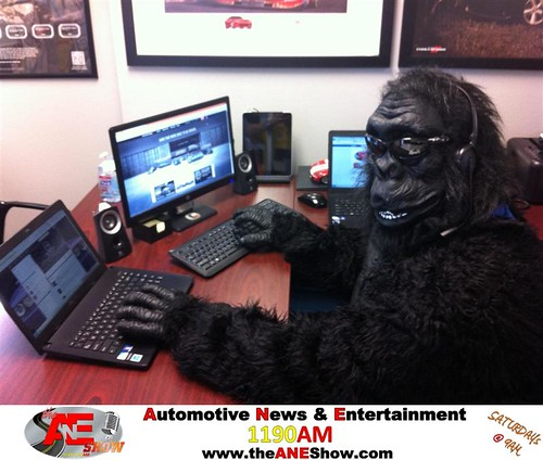 Joel The Gorilla by theaneshow