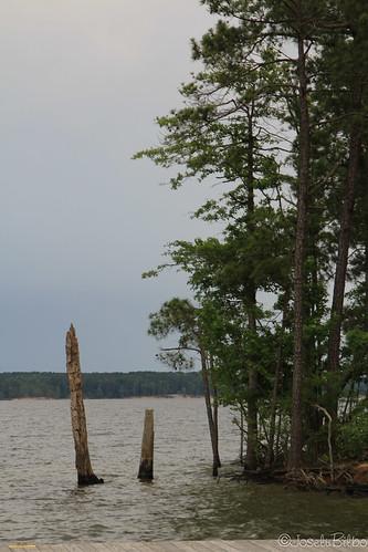 Jordan Lake State Park. NC by JoseluBilbo.