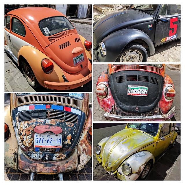 Vochos mexicanos: Mexican bugs