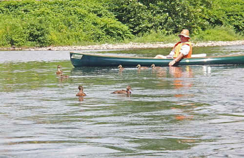 Allegheny River Canoe Amp Kayak Trip Flickr Photo Sharing