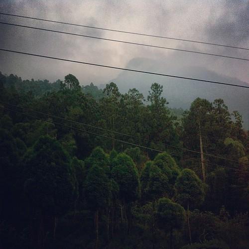 山上天黑的快。 #ali