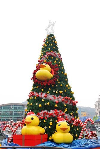 小鴨聖誕樹