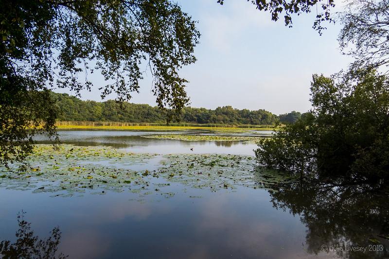 Hatch Pond