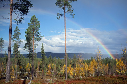 Rainbow with autumnal colours, Sodankylä, Lapland