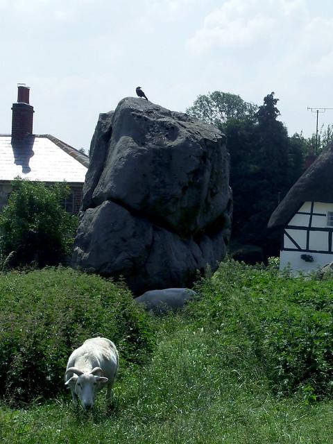 Avebury stones 14