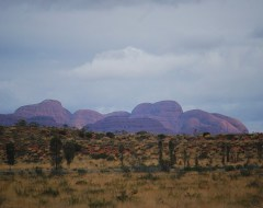 The Olgas - Outback