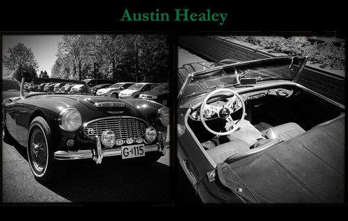 Austin Healey by Davidap2009