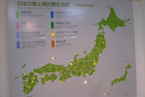 Endemic Parasitic Diseases in Japan