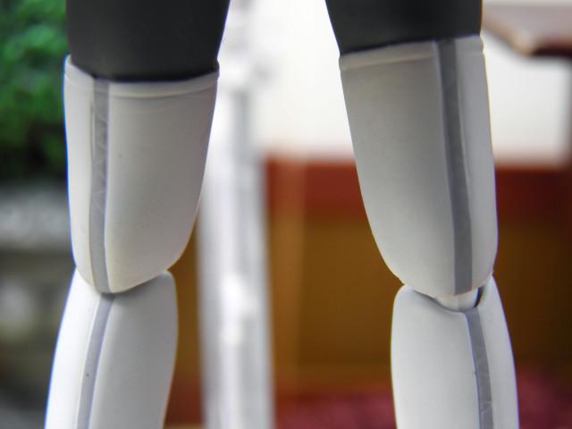 iri-legs